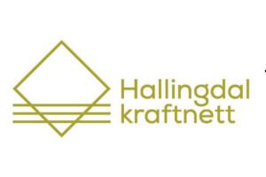 Hallingdal Kraftnett