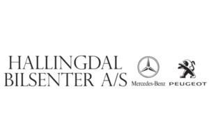 Hallingdal-Bilsenter-Team-Hallingdal